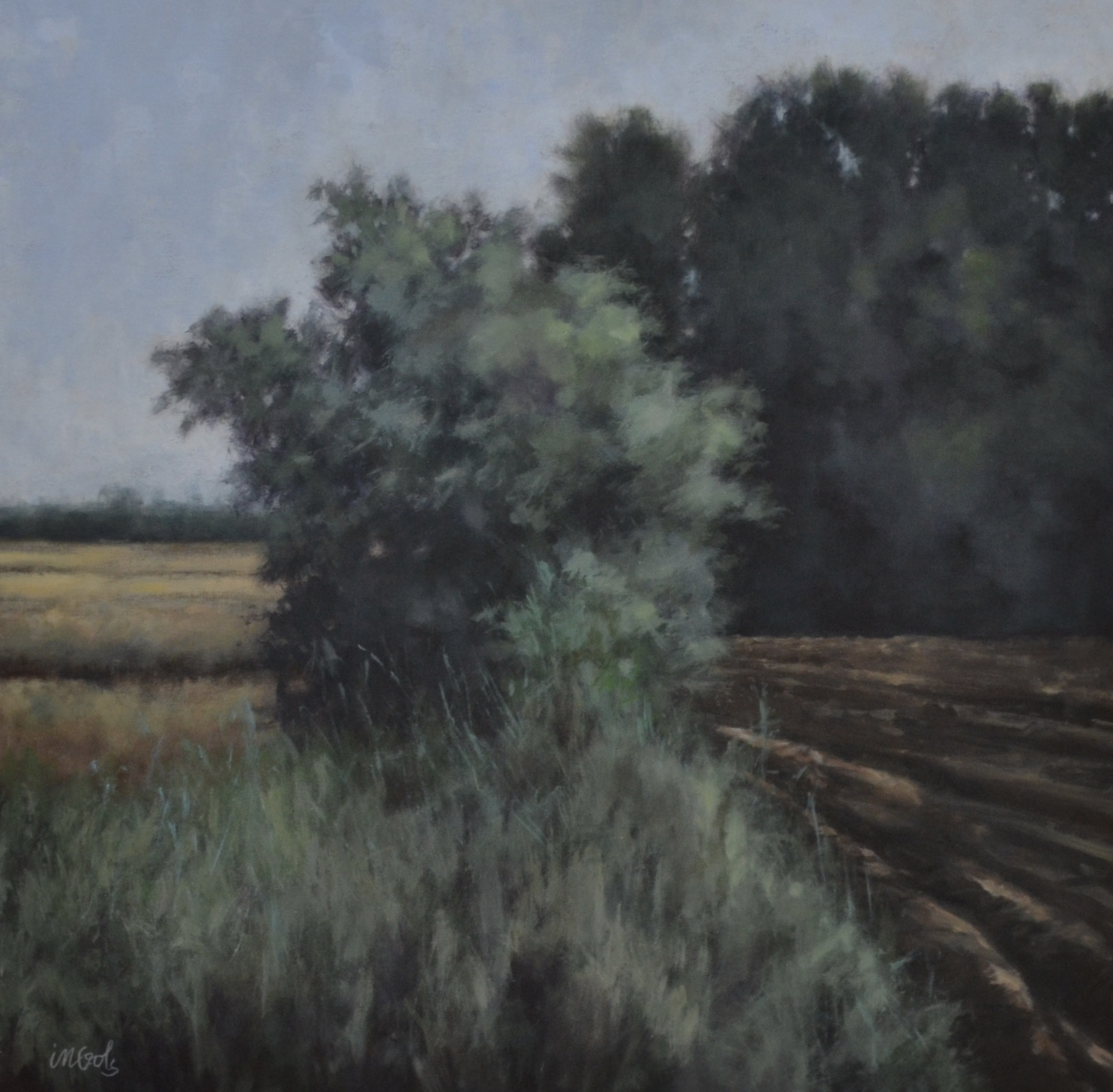 Jane Ingols Art, 30x30