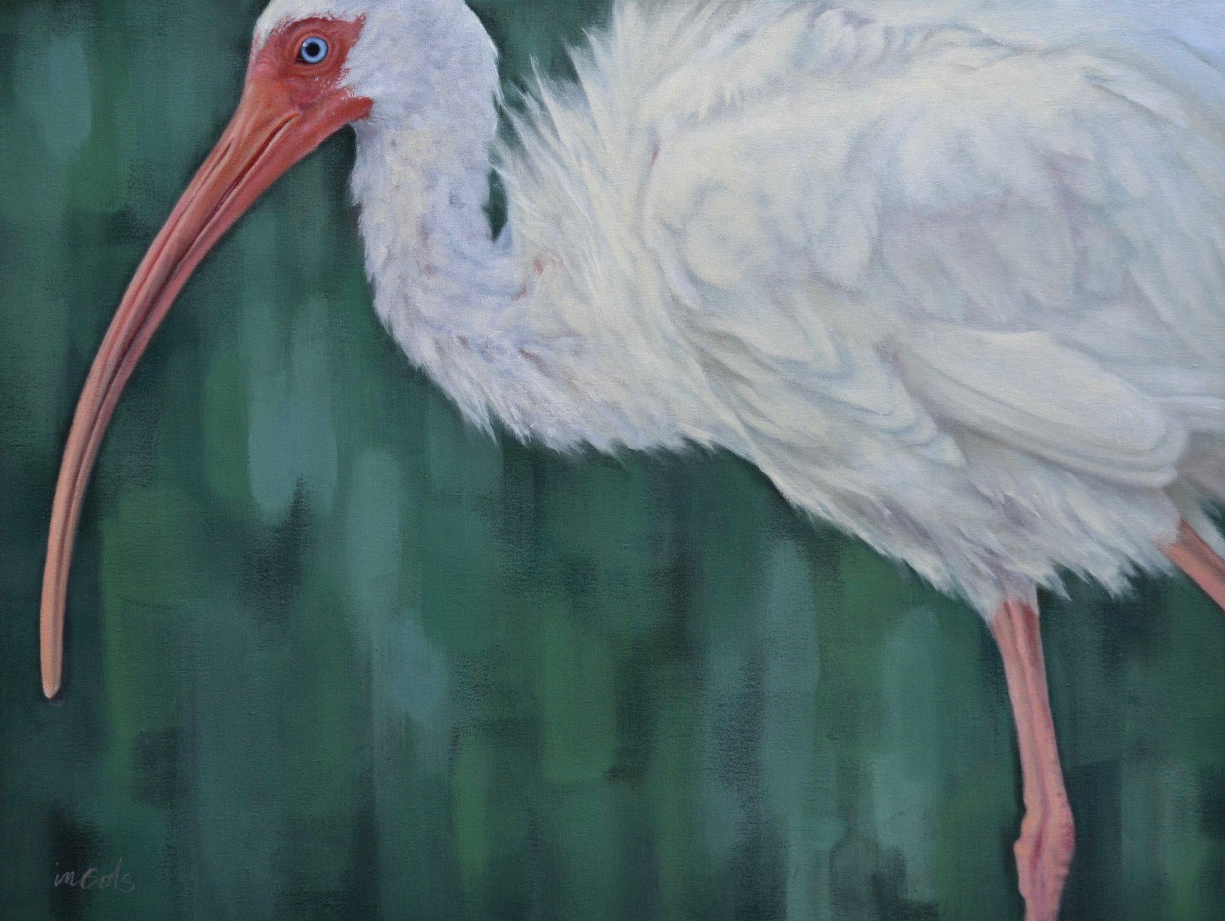 Jane Ingols Art, 30x40