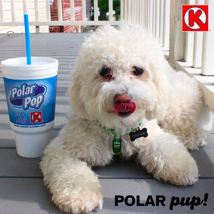"""The dog days of summer are here! Keep your cool with a Polar Pop Cup."""