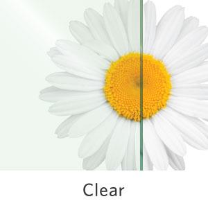 Clear Standard Glass