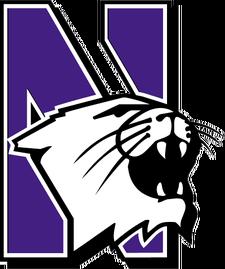 NorthwesternWildcats.png