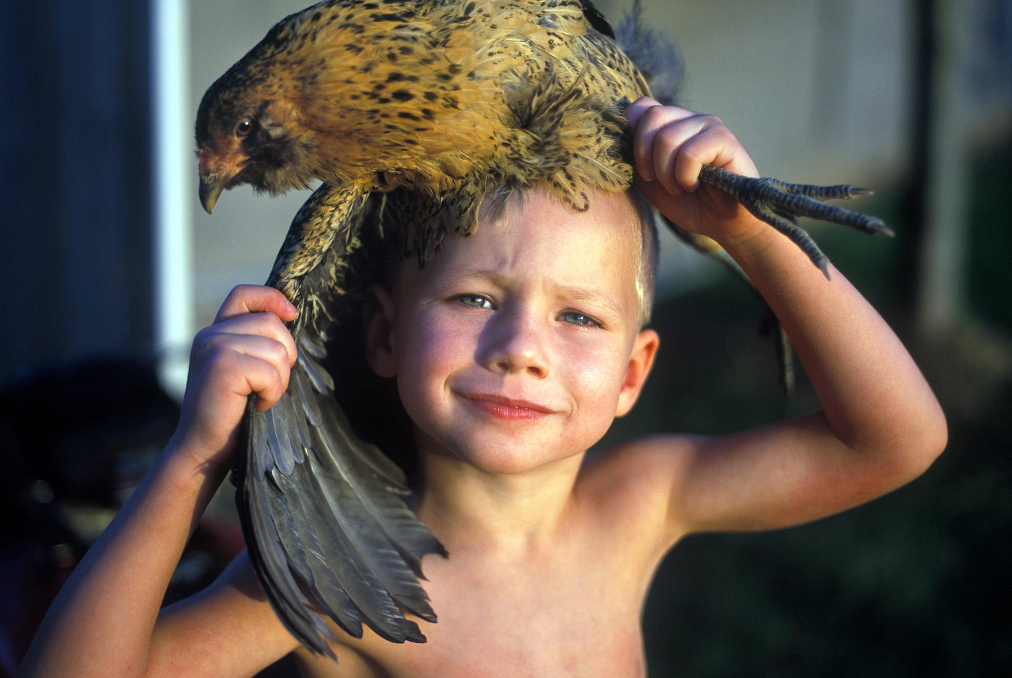 _ChickenBoy.jpg