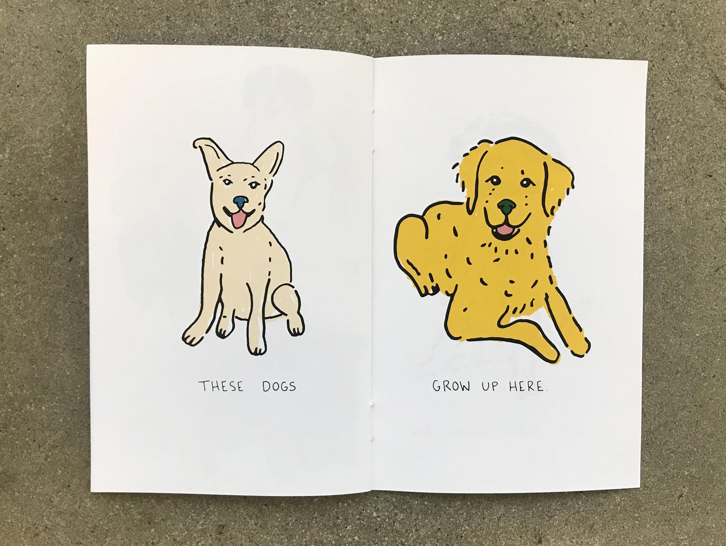 Dogs_0020_19.jpg