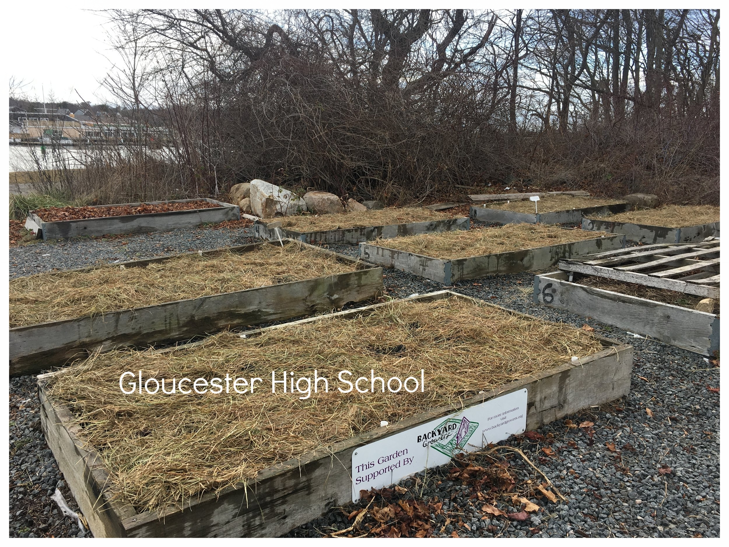 High School Garden Mulched_Dec2016.jpeg