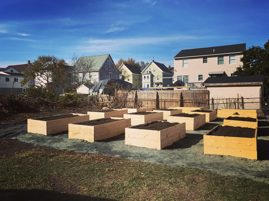 With the support of the Whole Cities Foundation, Backyard Growers built the Willowood Community Garden in the fall of 2017.