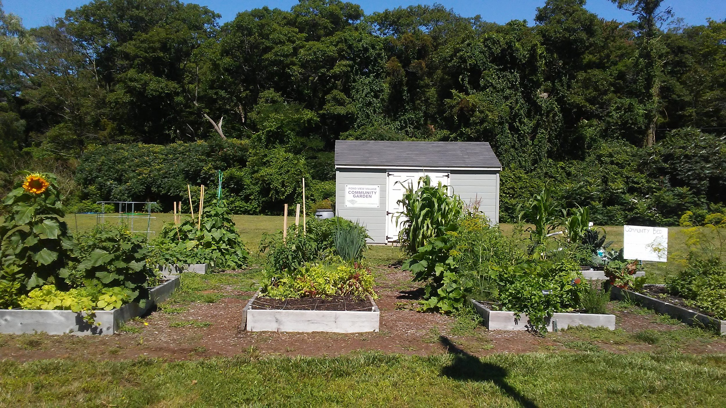 Pond View Community Garden