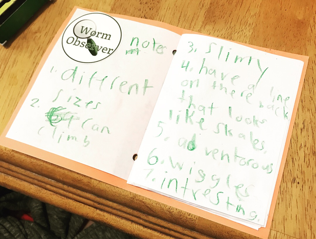 A child's notes in their journal after holding the worms