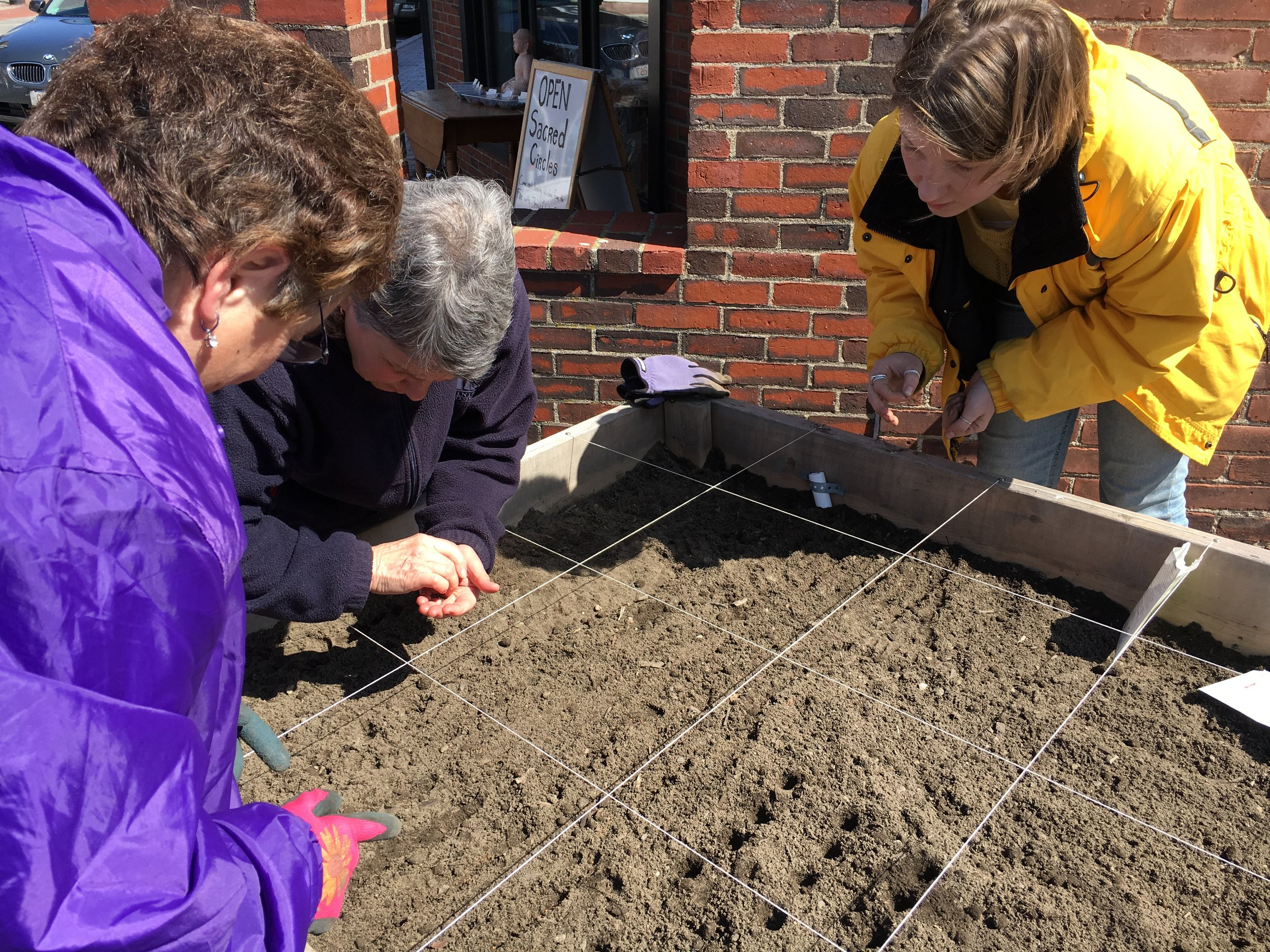 Planting arugula and spinach peas with guests at Rose Baker Senior Center