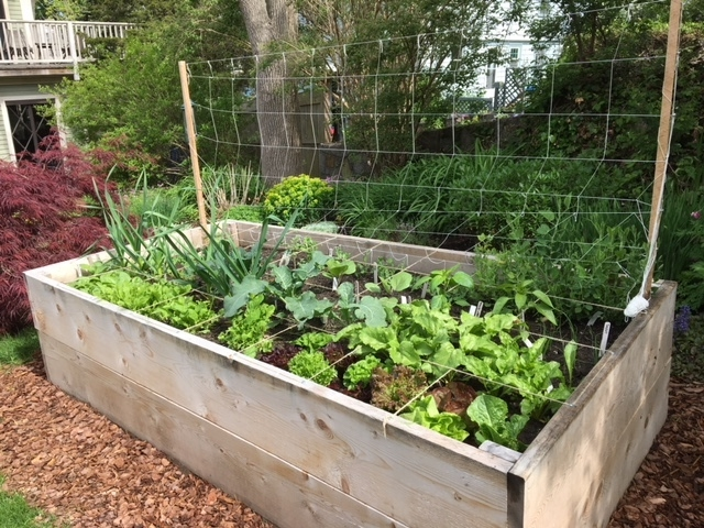 Example of a 4'x 8'x 2' raised garden bed.