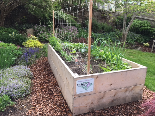 A 4'x'8'x2' raised garden bed in a Gloucester backyard