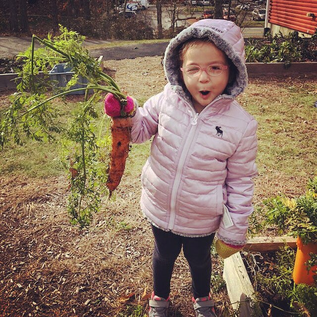 A great harvest for Stone Soup at the Preschool!