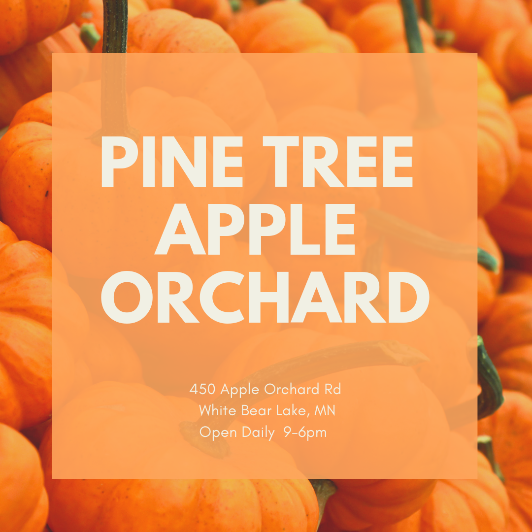 Pine Tree Orchard