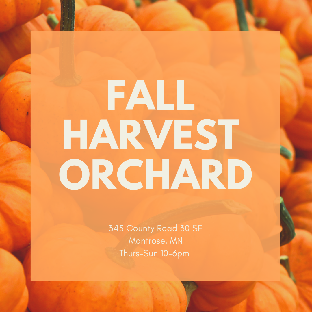 Fall Harvest Orchard