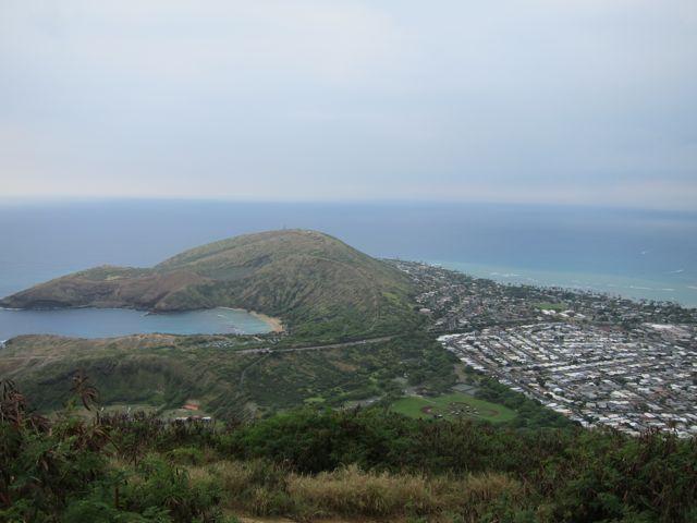 Koko View.jpg