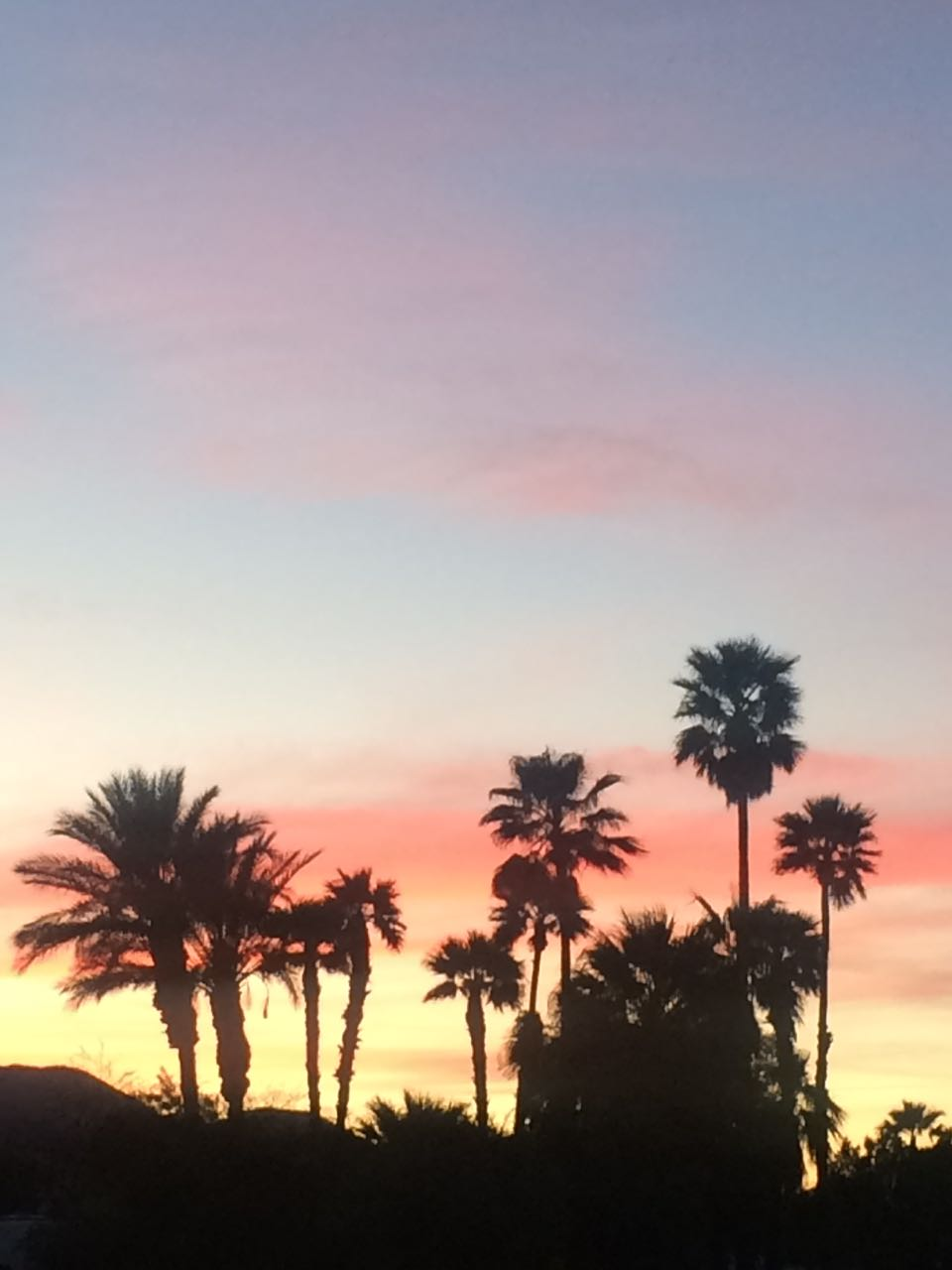 Palm Spring Sunset