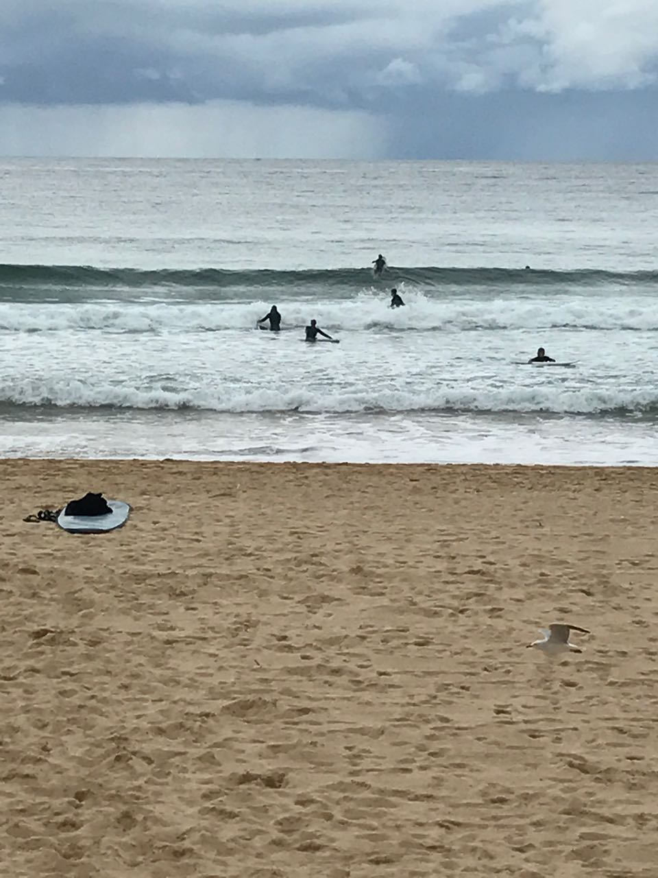 Surfers in Manly Beach.jpg