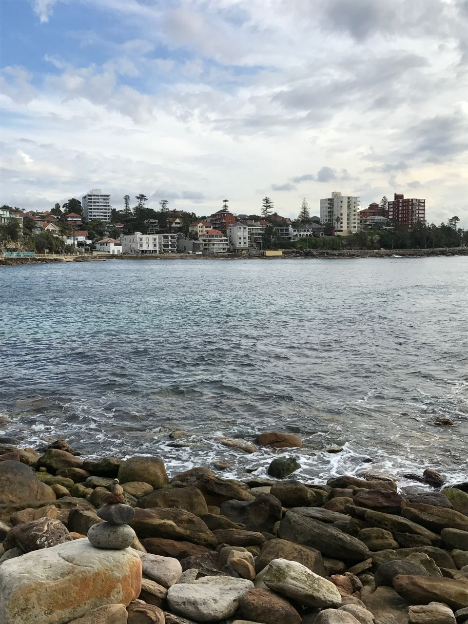 Manly from Shelly.jpg