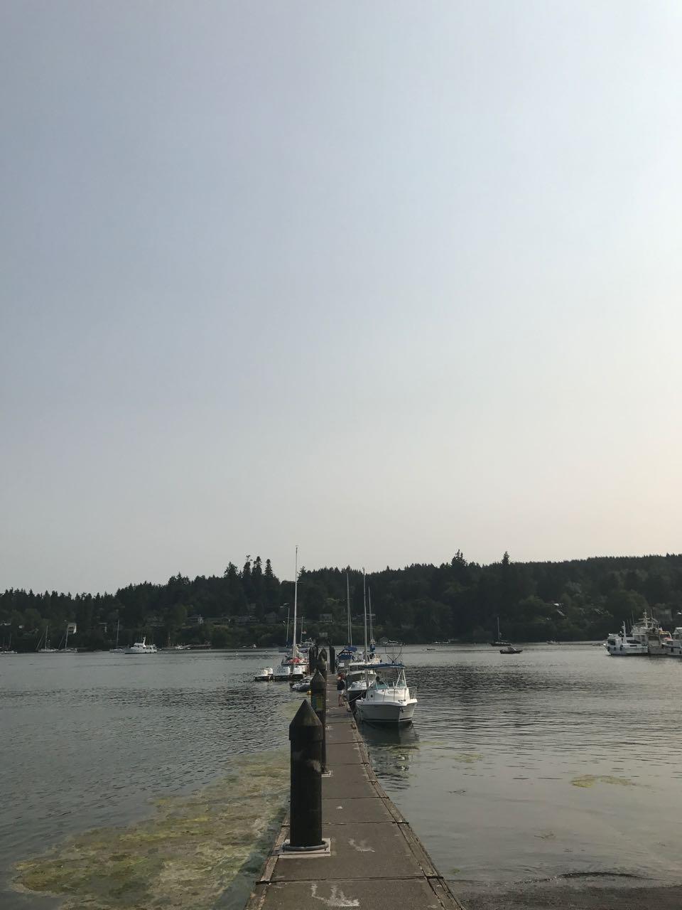 Bainbridge Dock.jpg