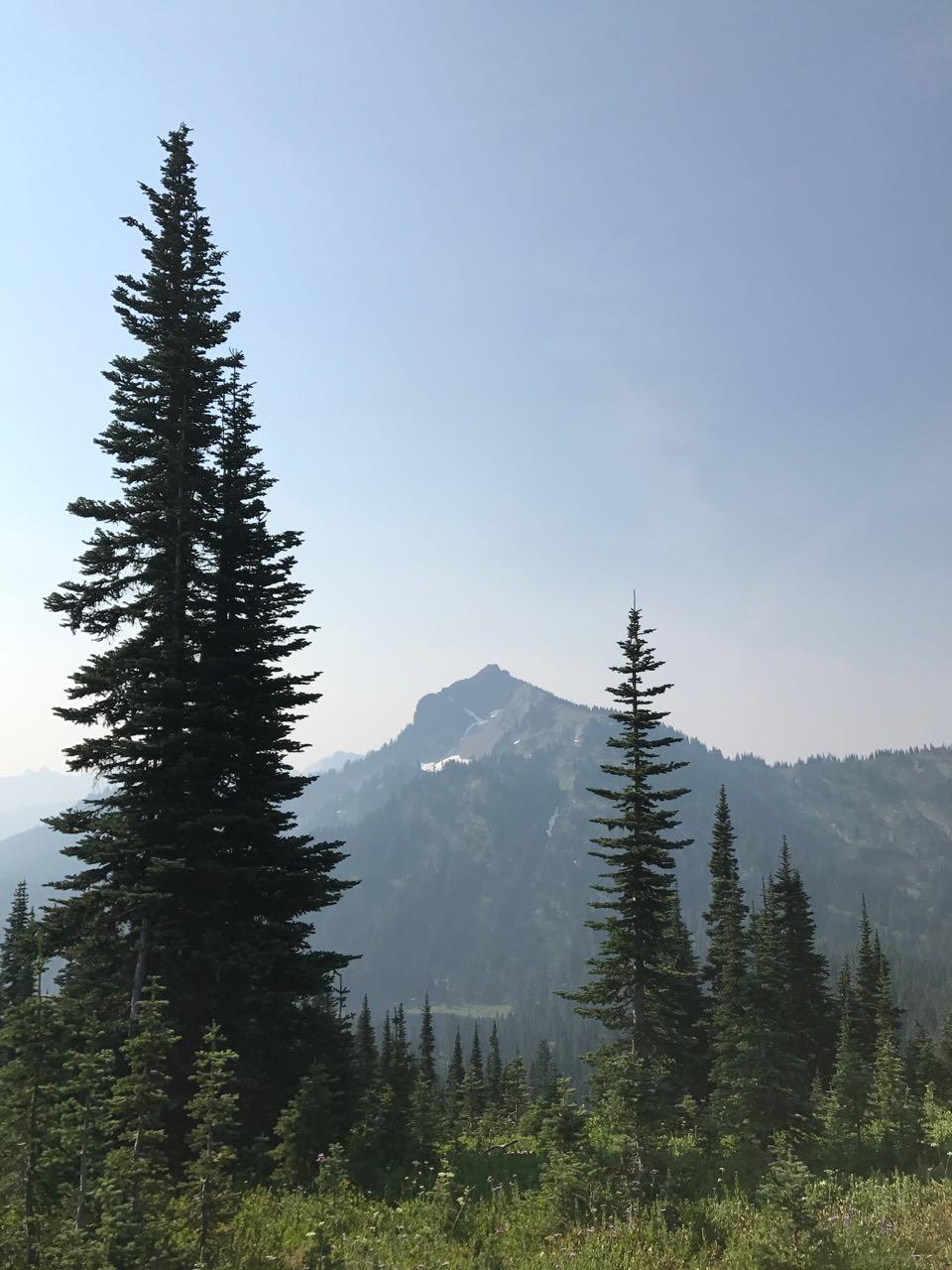 Rainier Hike 2.jpg