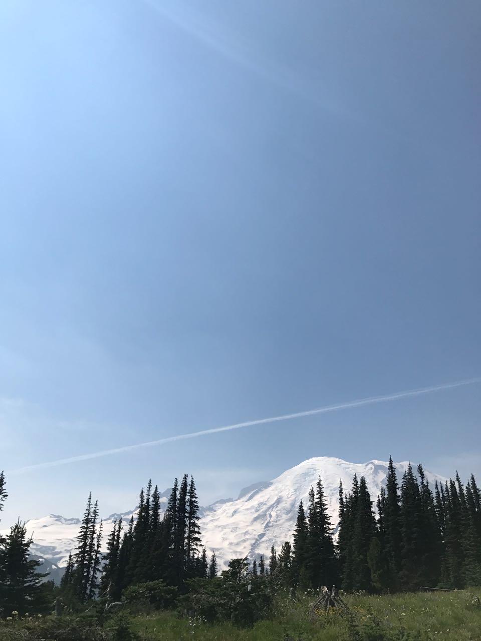 Mt Rainier view.jpg
