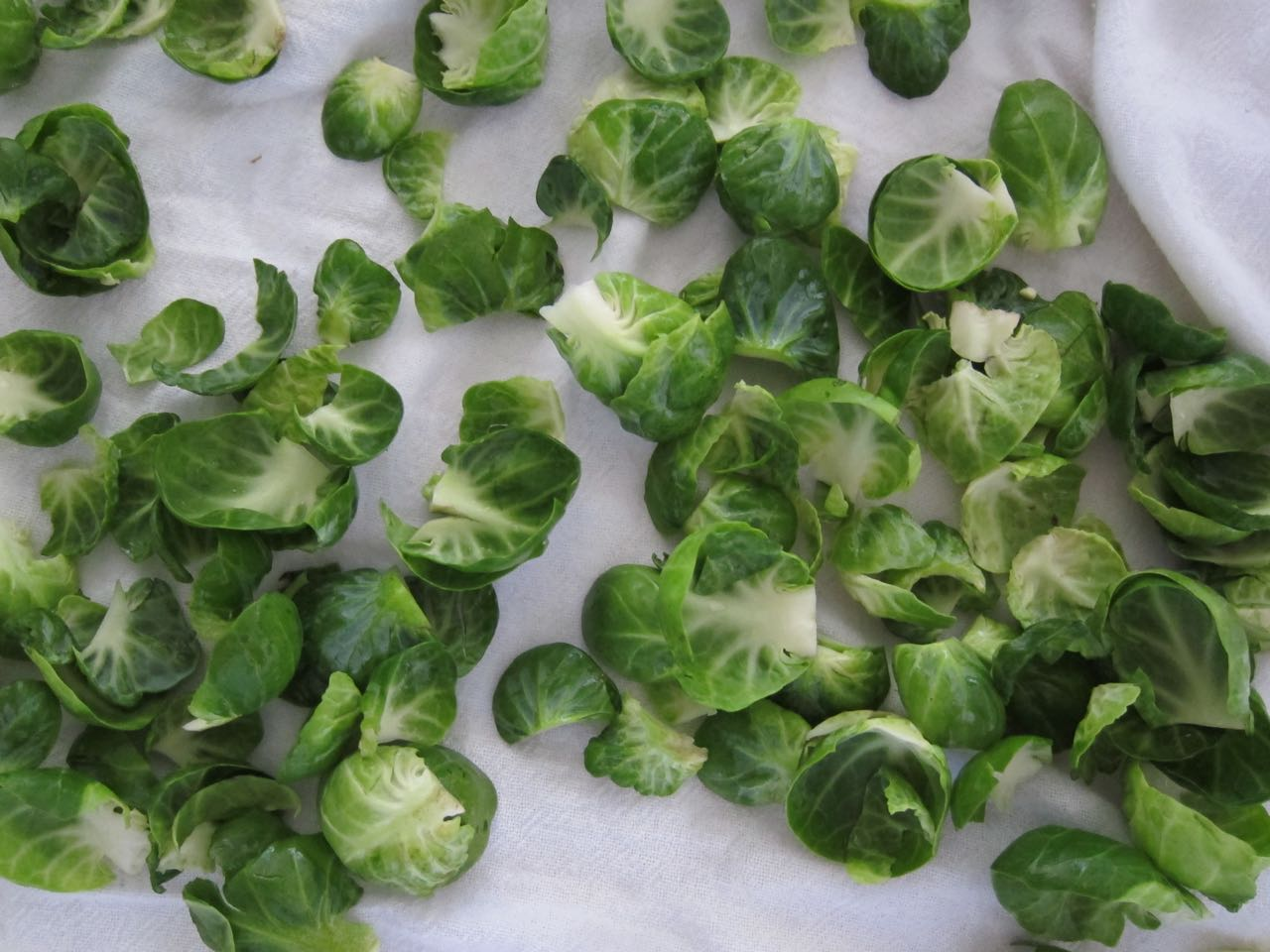 Brussels Sprout Leaves