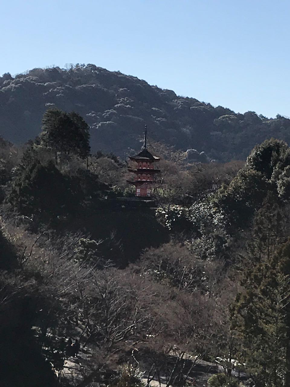 pagoda on a hill.jpg