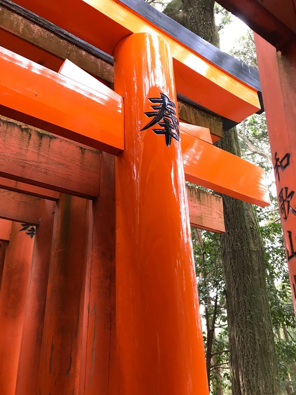 orange gates.jpg