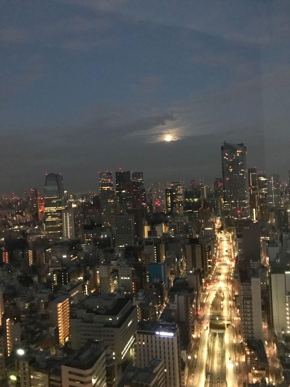 tokyo night moon.jpg