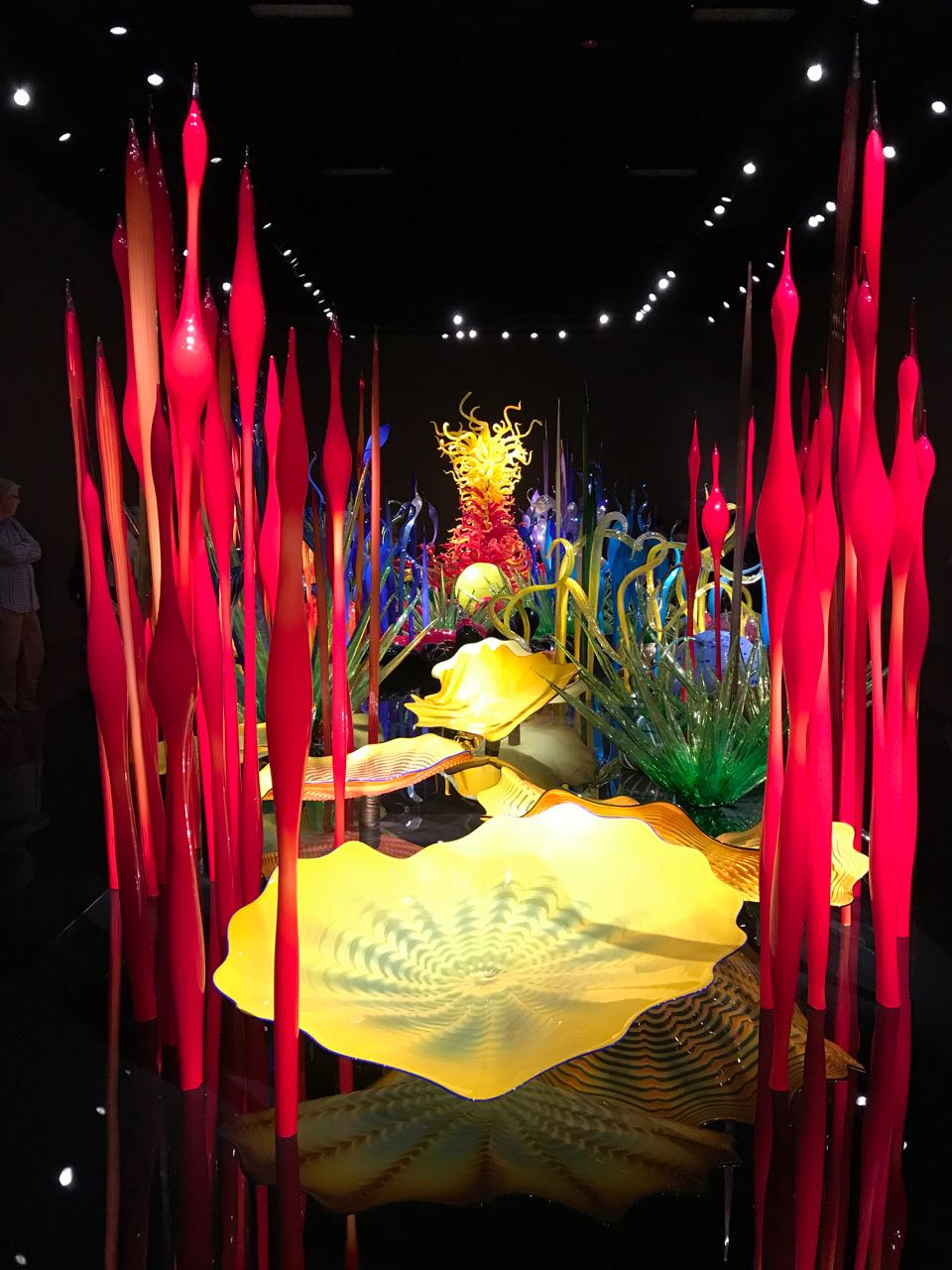 Chihuly glass.jpg