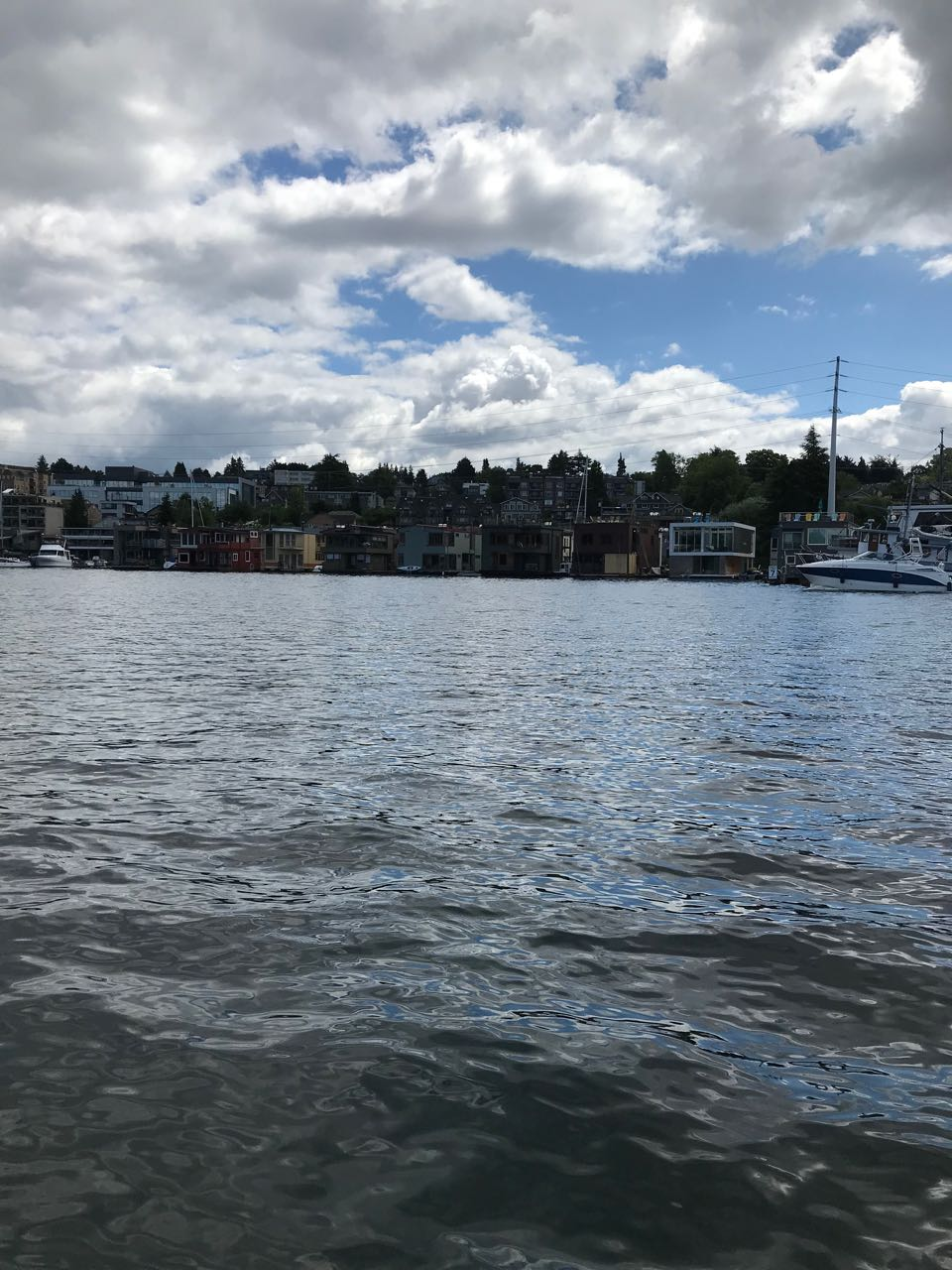 Lake Union Houseboats.jpg