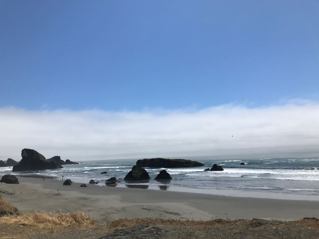 South Oregon Coast