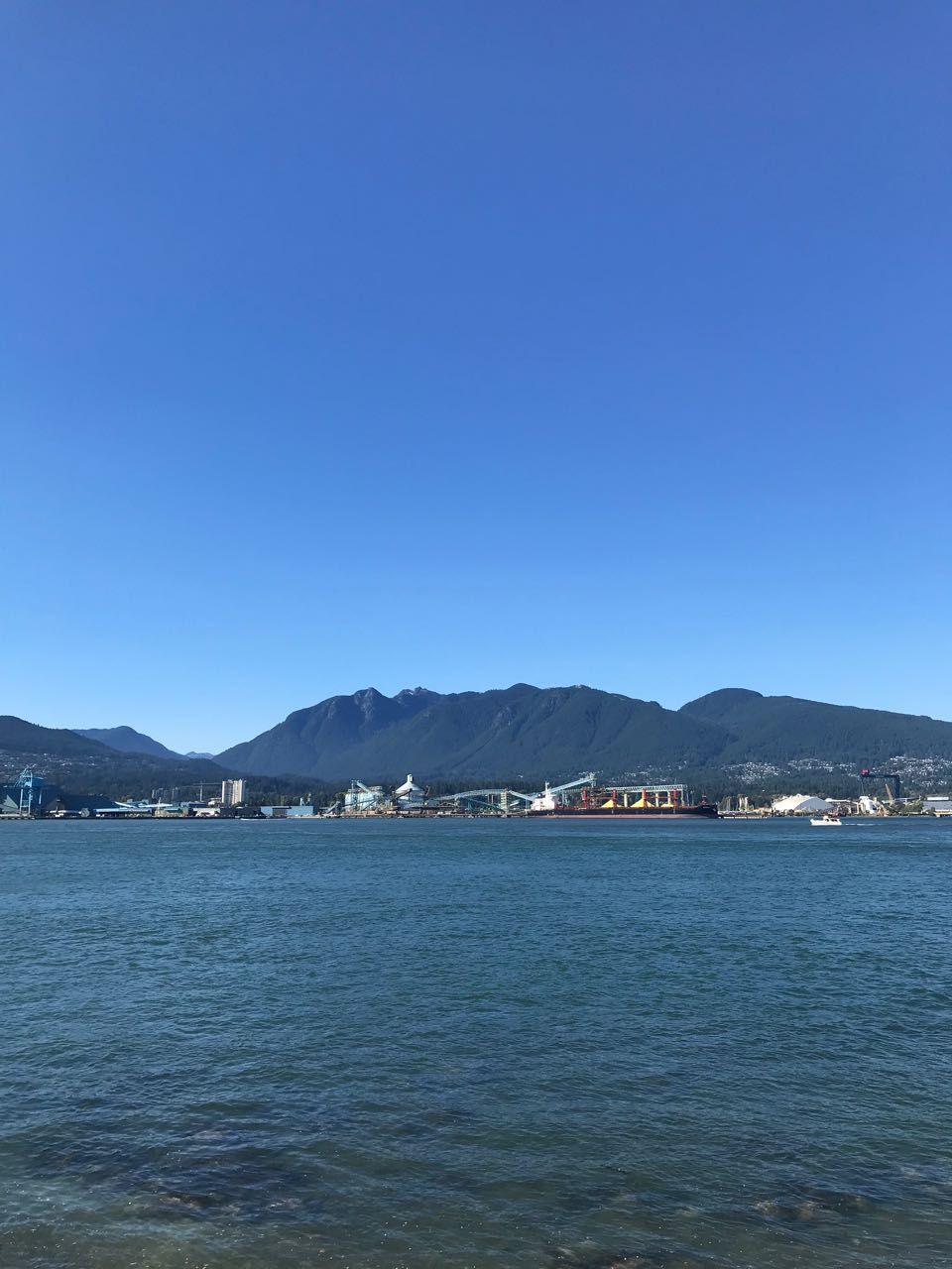 vancouver harbour.jpg