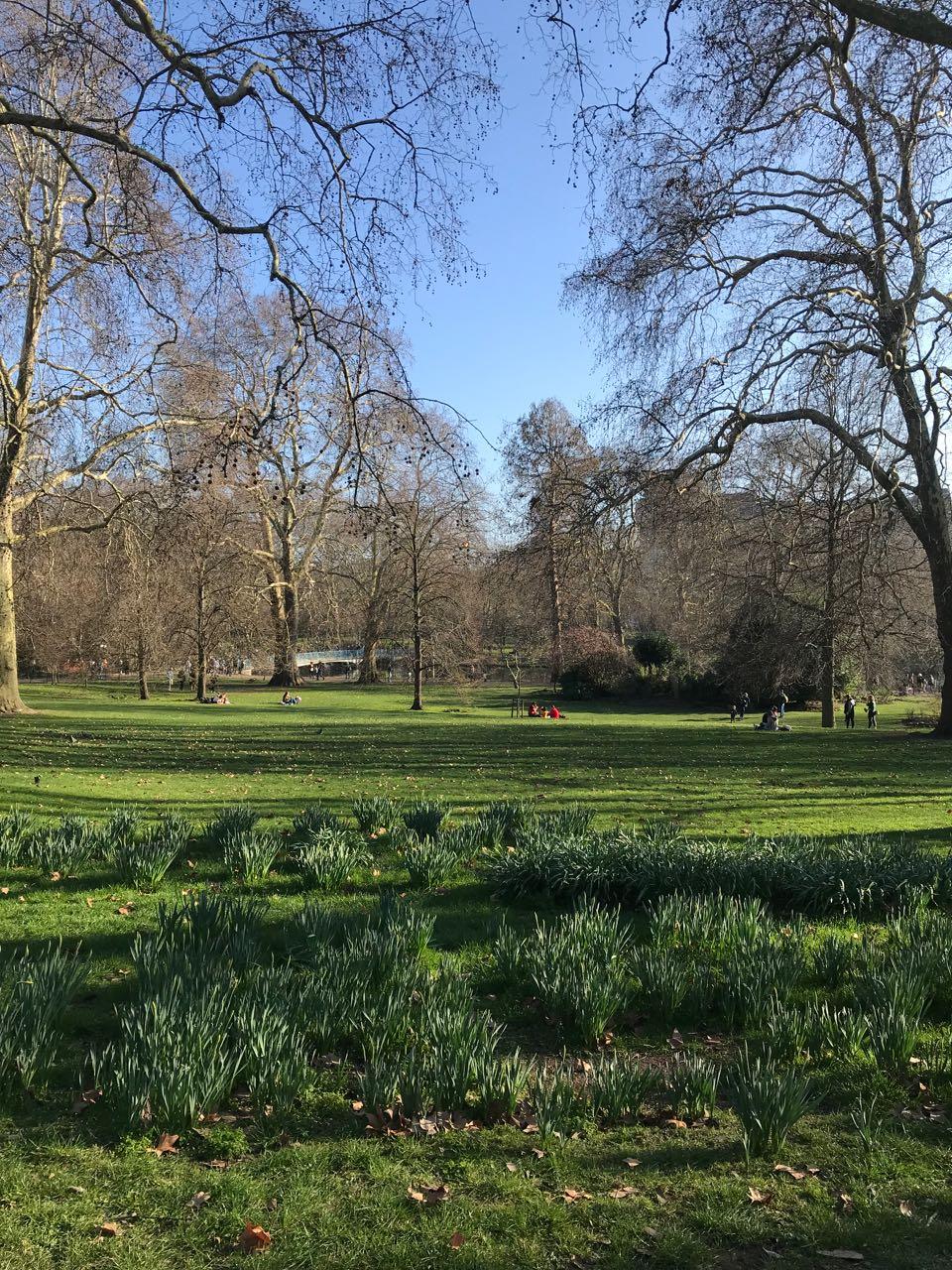 St. James Park.jpg