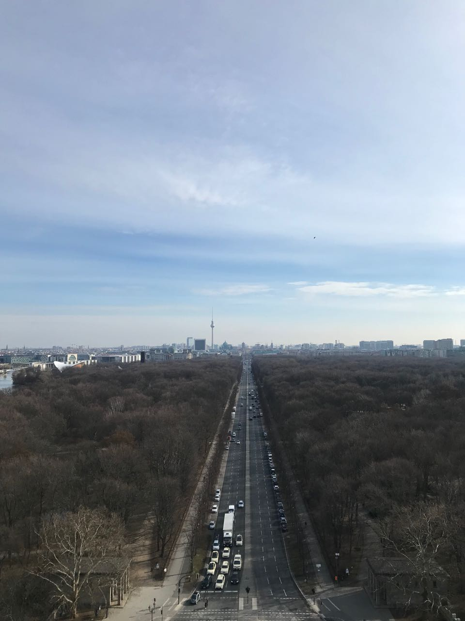 view from victory column.jpg