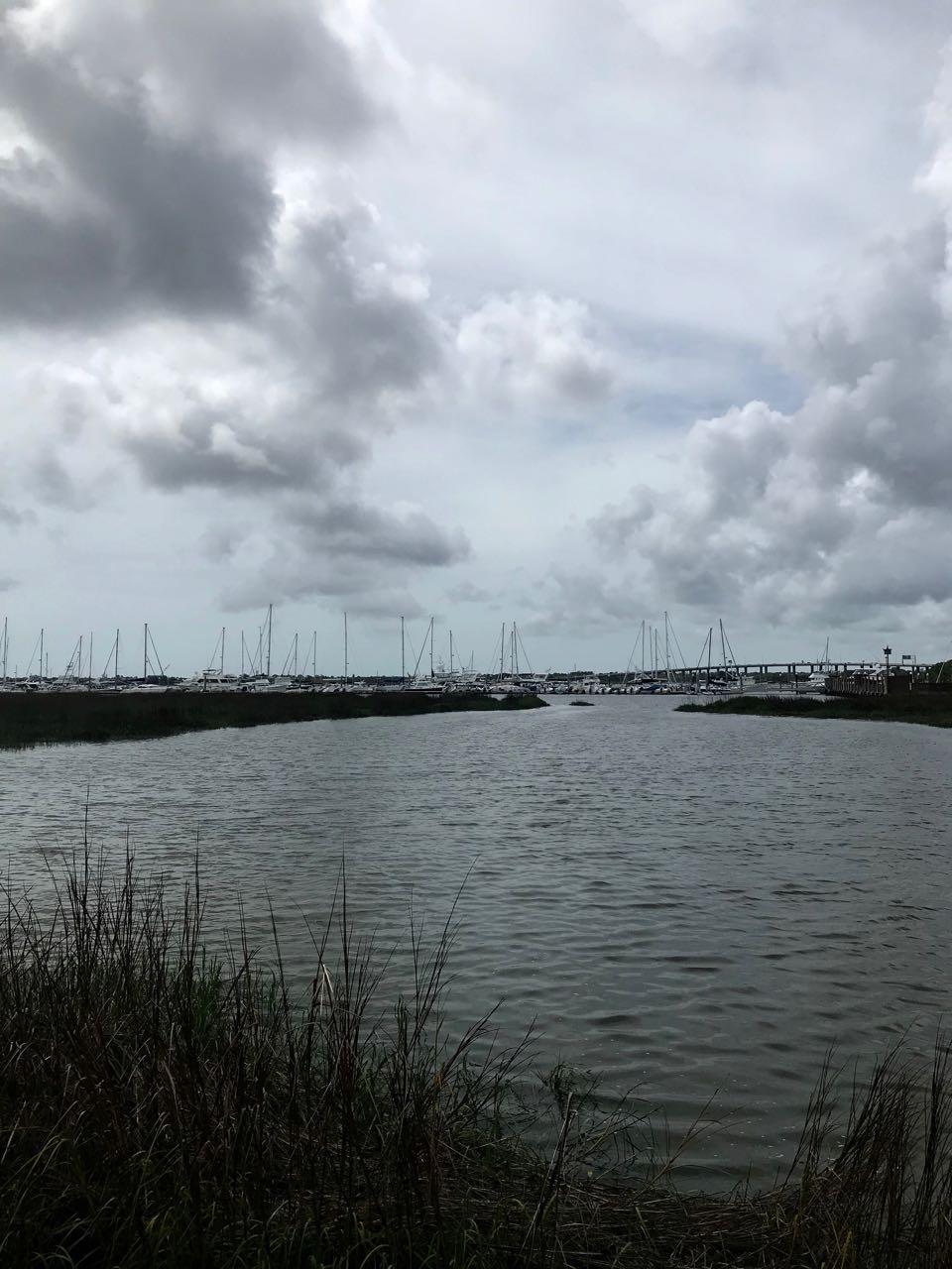 Charleston marsh.jpg