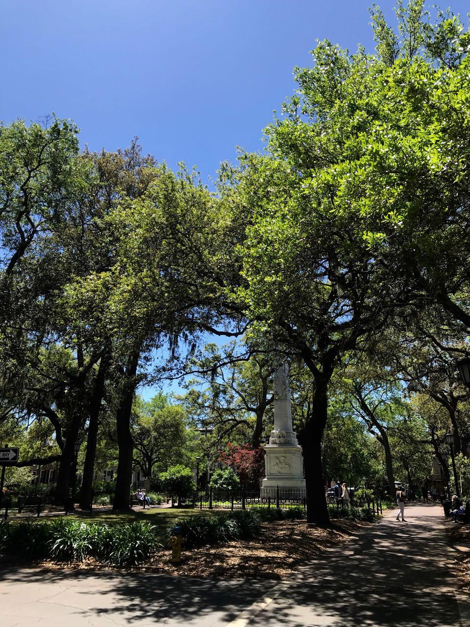 Savannah square.jpg