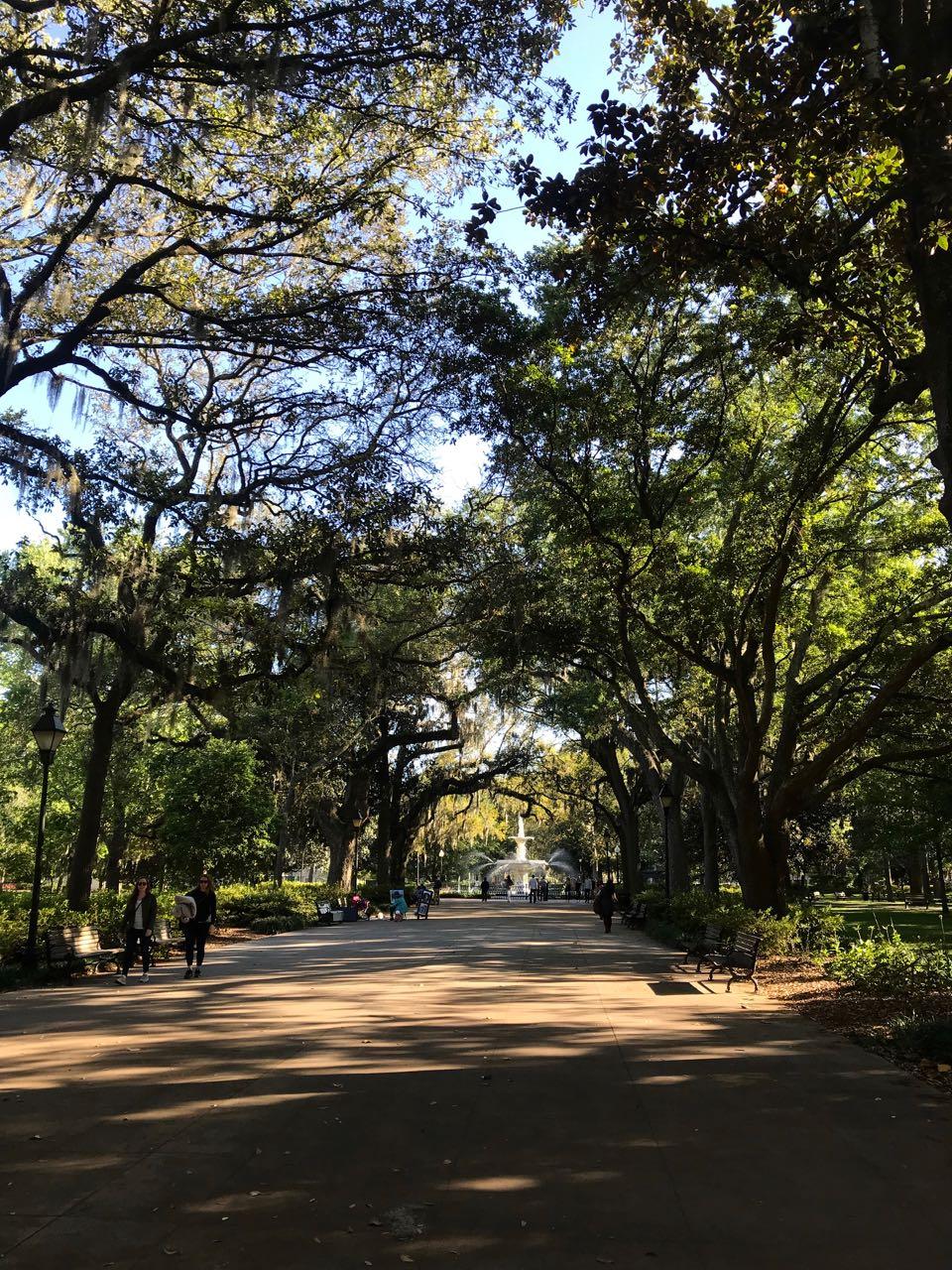 savannah street.jpg