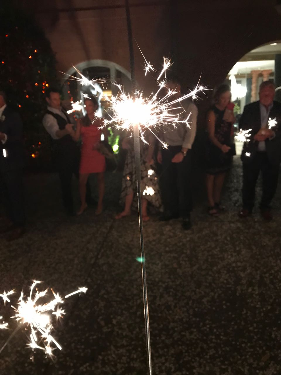 sparklers savannah.jpg