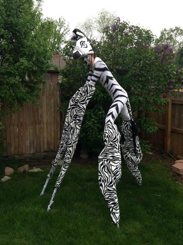 stilts.Quad.Zebra.Borrillo.Ent-web.jpg