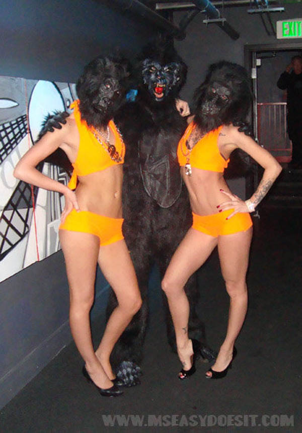Gorillas_Beta-web.jpg