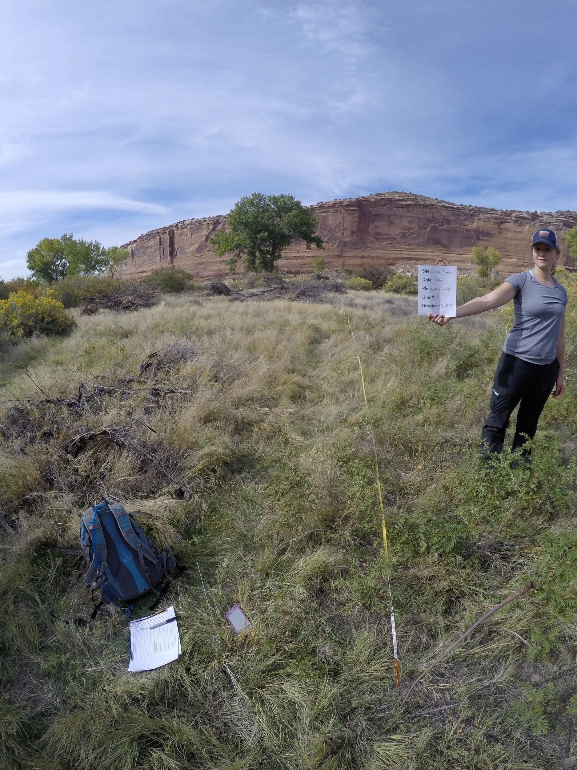 Killian Rush measuring vegetation cover at the Catalpa Property. Photo: CCA.