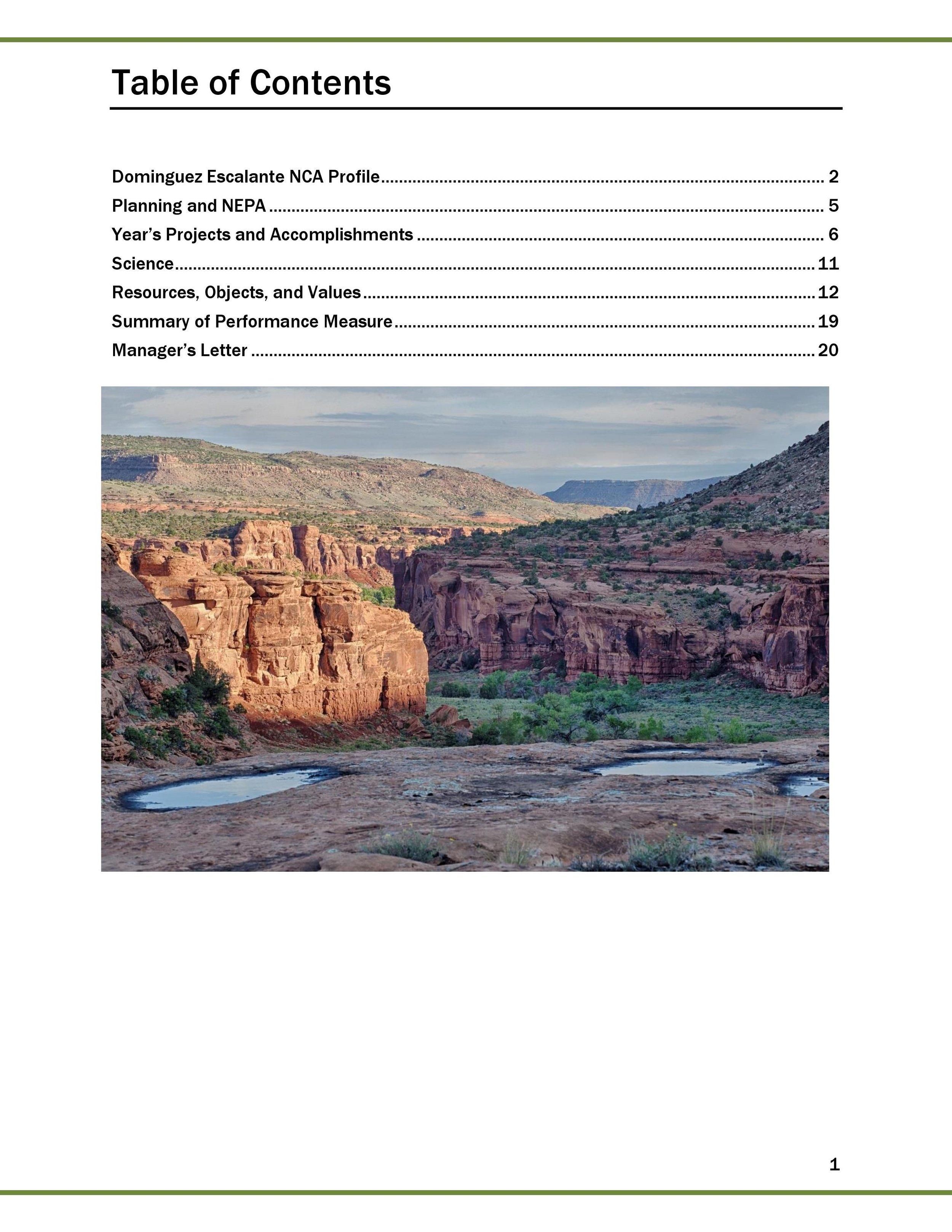 2016 FINAL DENCA REPORT_2017_01_09-page-002.jpg