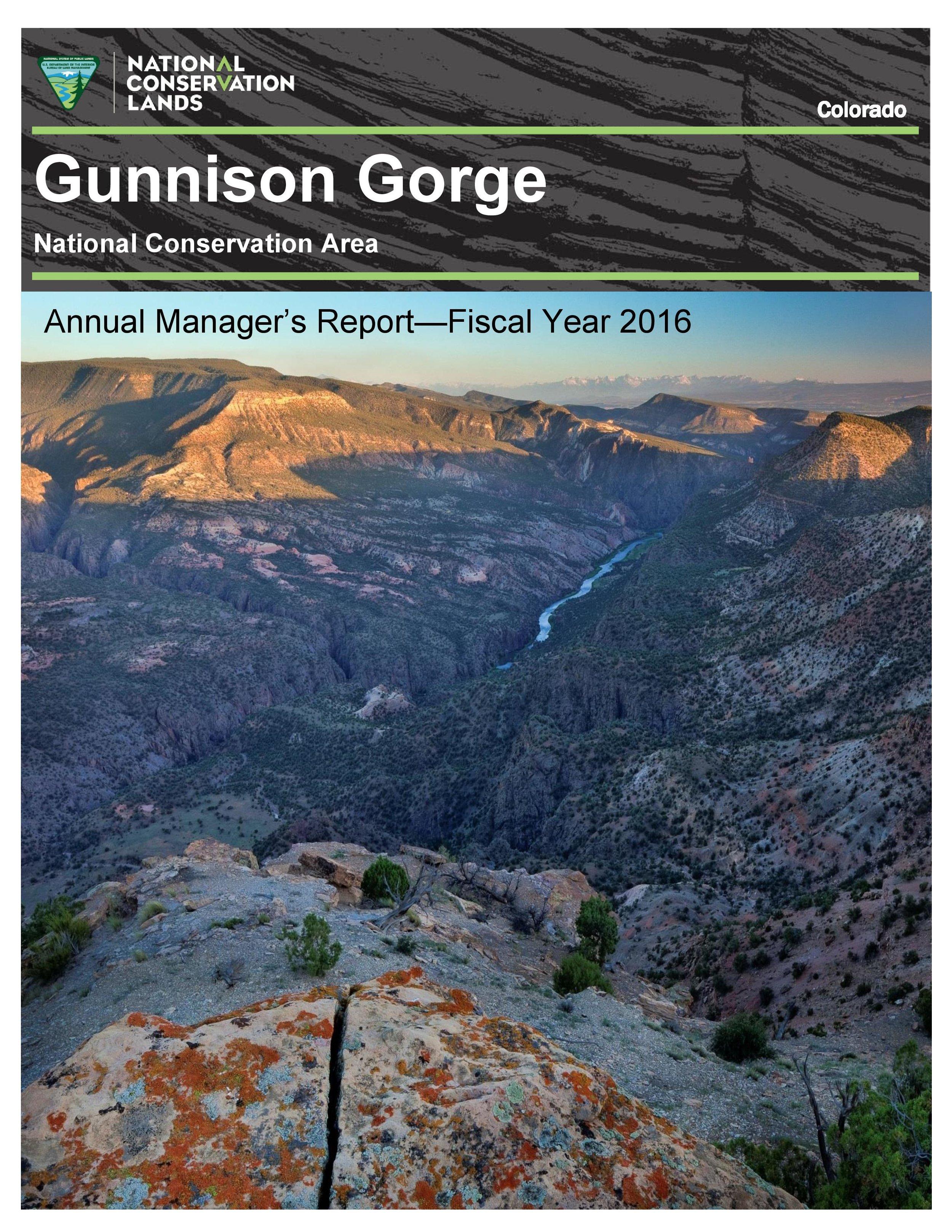 2016 FINAL GGNCA REPORT_2017_02_01-page-001.jpg