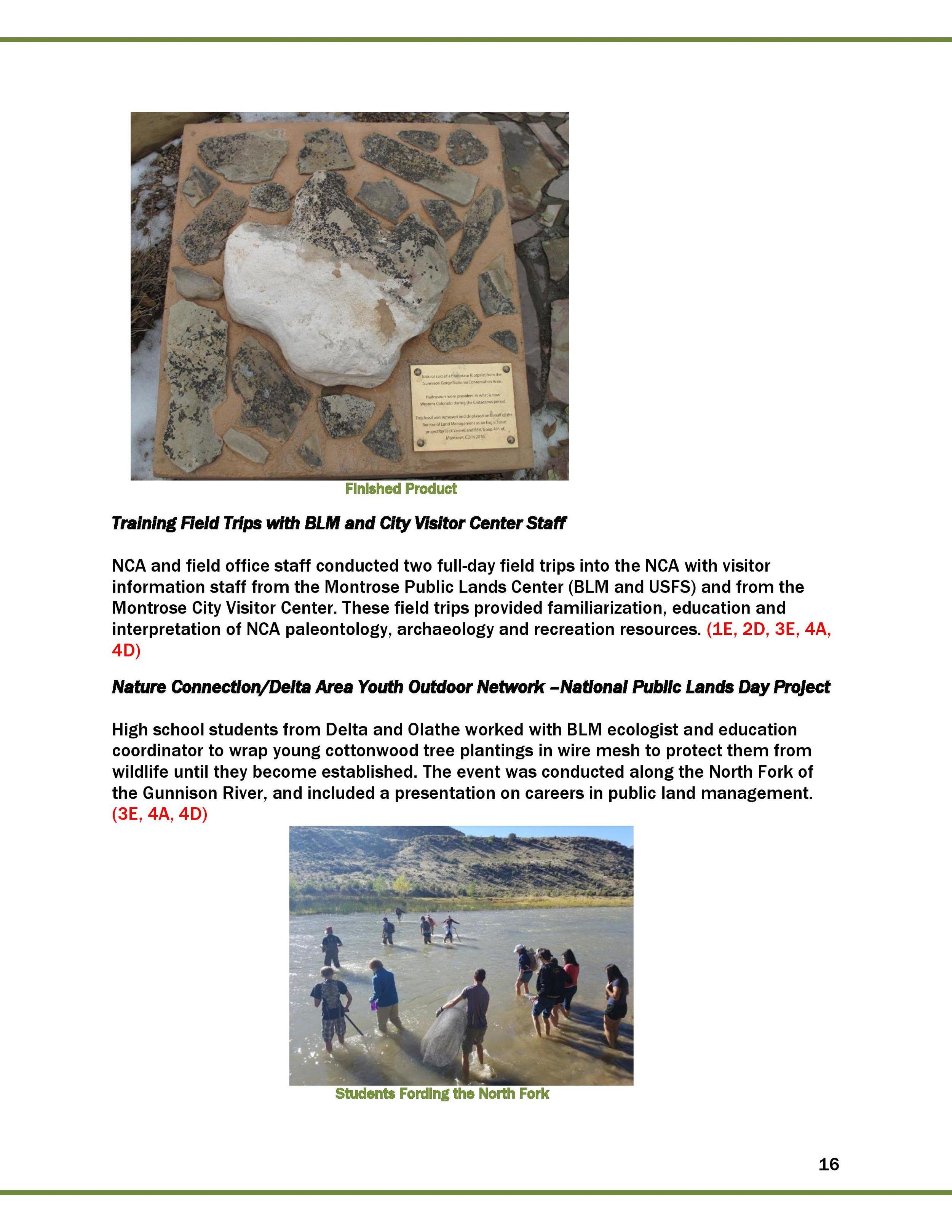 2016 FINAL GGNCA REPORT_2017_02_01-page-017.jpg