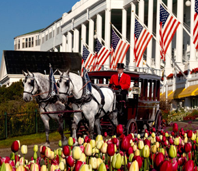 Grand Hotel on Mackinac Island - Delight in a 2-night stay at the Grand Hotel located on the famous Mackinac Island. Includes dinner for two on arrival day, breakfast & dinner on day two, and breakfast on departure day. Take advantage of a round of golf for two at the jewel including cart & horse-drawn carriage transportation between the Grand nine & the Woods nine. Donated by the Grand Hotel.