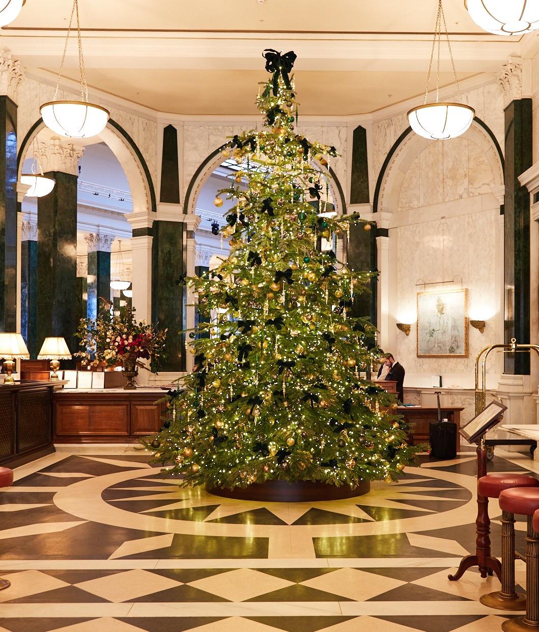 Christmas_Tree_105.jpg
