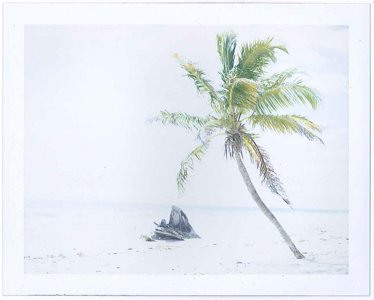 beach-polaa.jpg