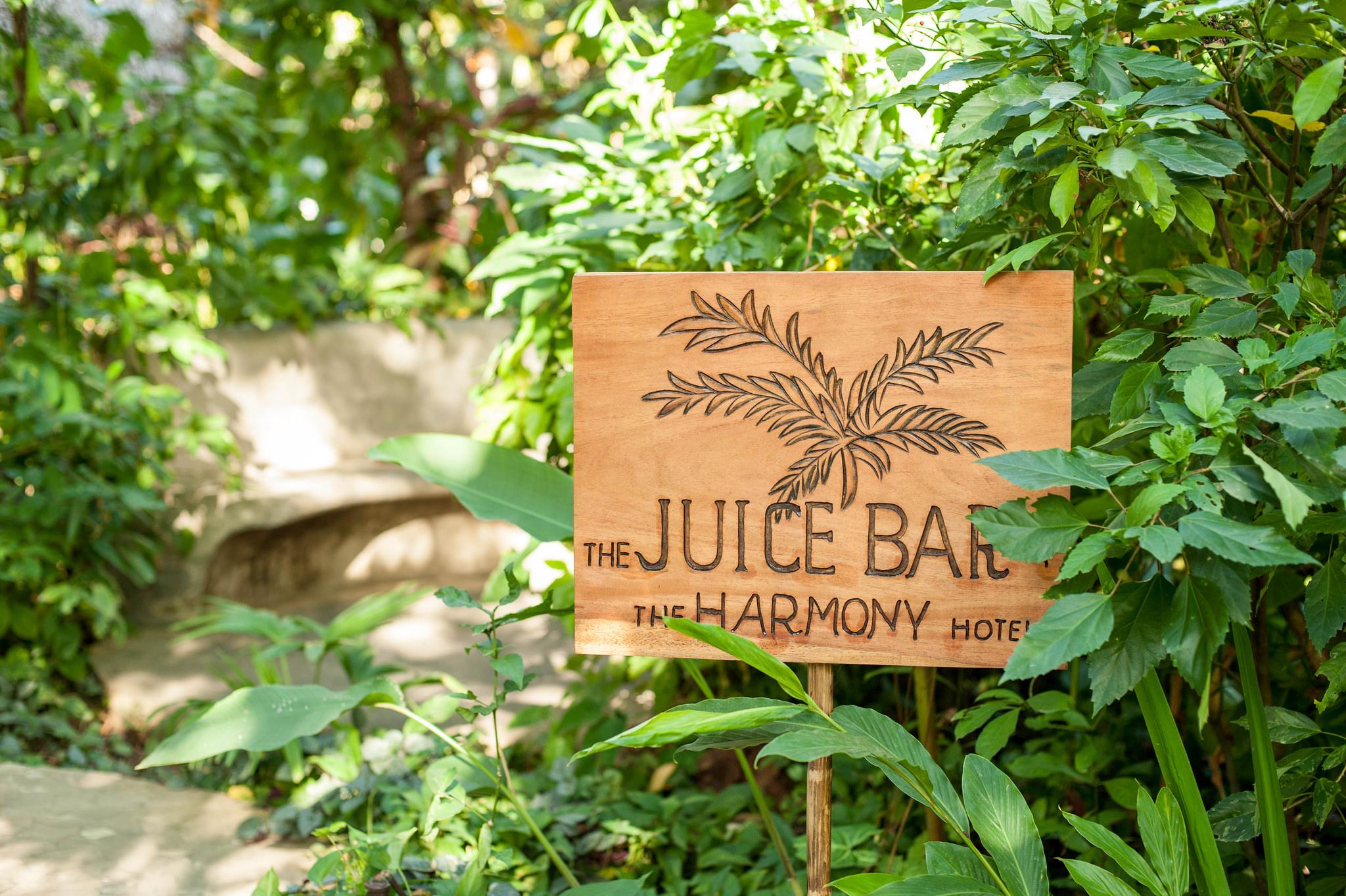 harmony-hotel-juice-nosara