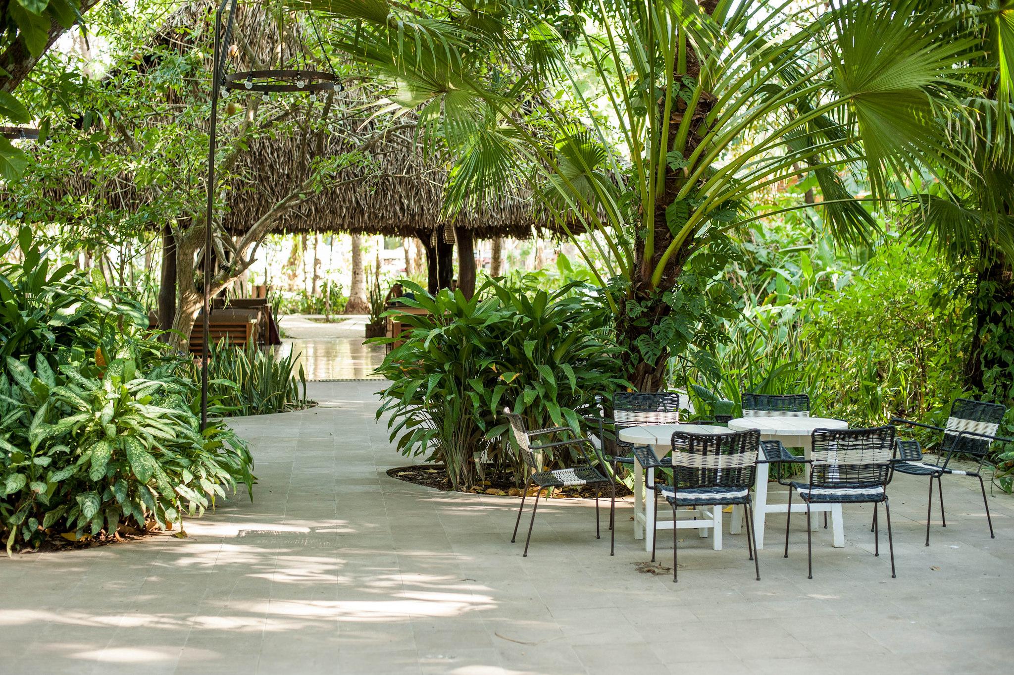 harmony-hotel-nosara-costa-rica