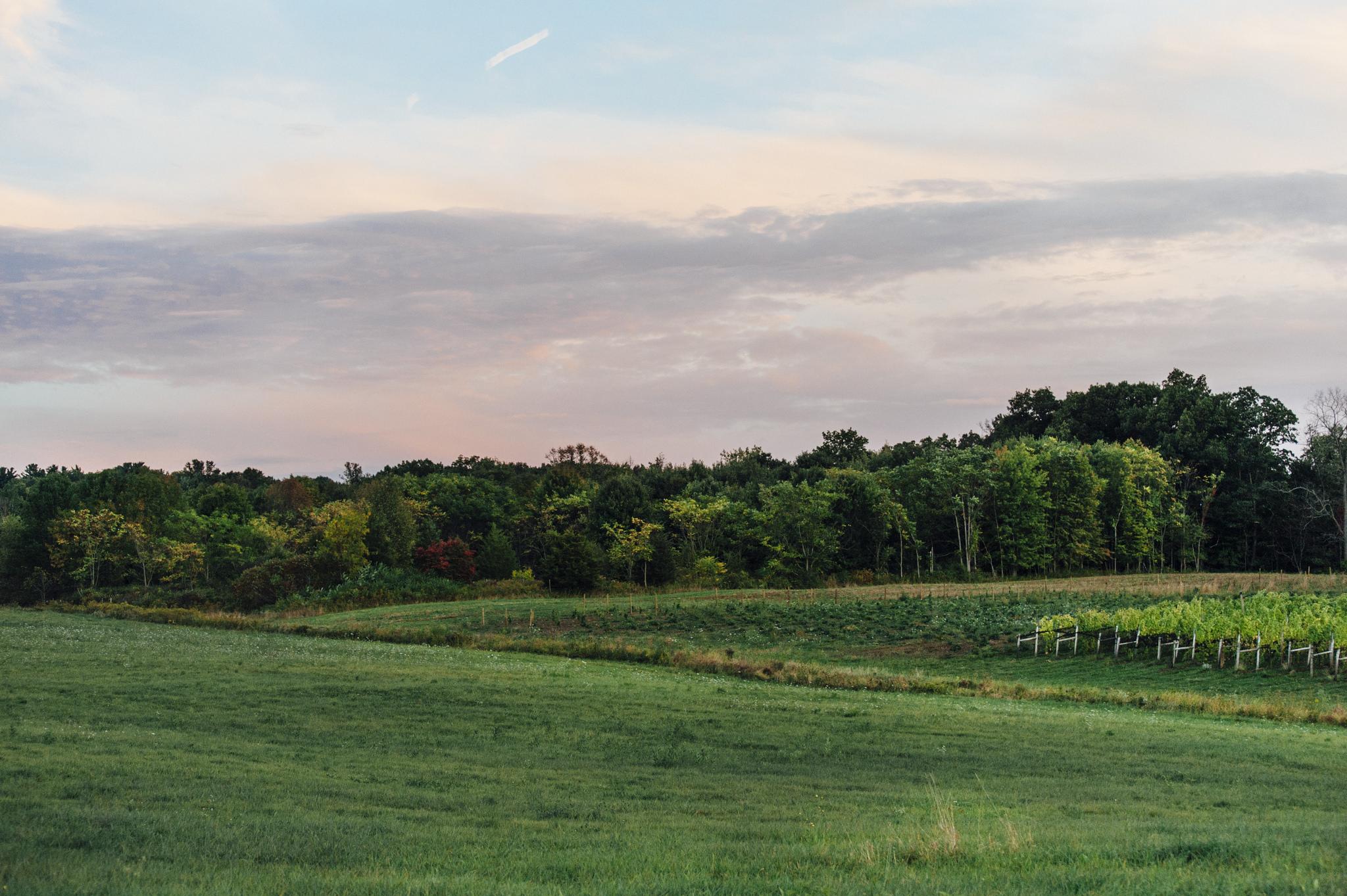 Finger Lakes New York Wineries